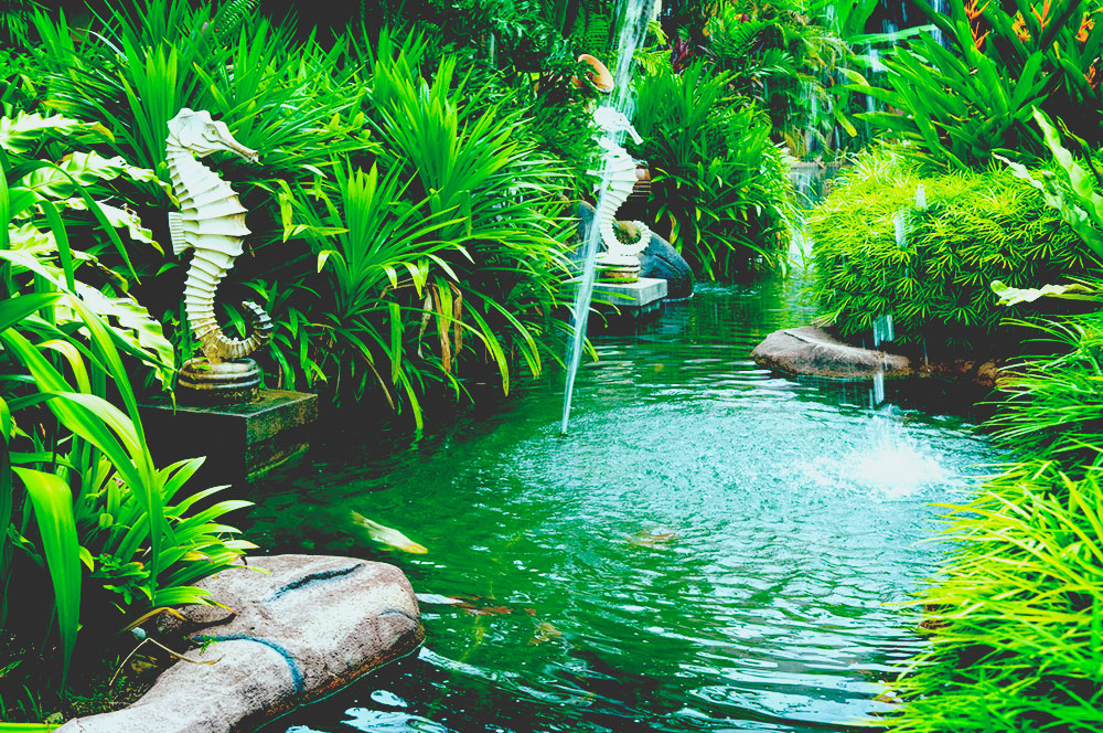 Tropical zen garden view with fountain and green plants best solar fountain pump