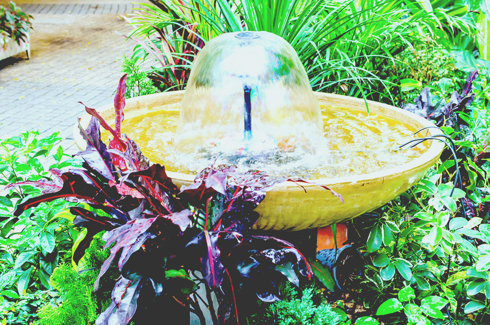 fountain in the park best solar water pump