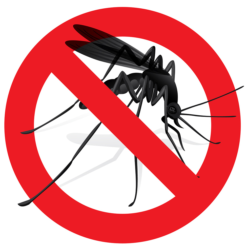 no mosquito sign best solar powered bug zapper